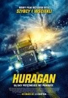 https://www.filmweb.pl/film/Huragan-2018-782044