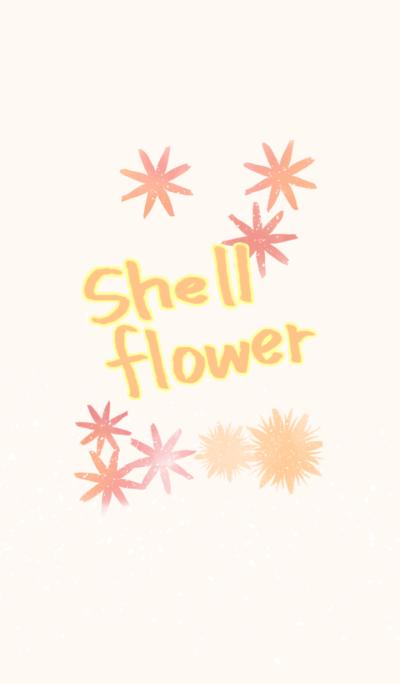 Shell flower adult ver