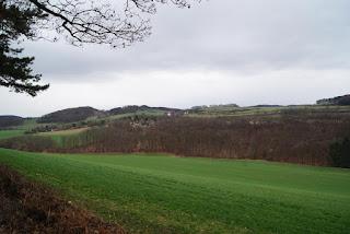 Ein schöner Ausblick aufs Kalletal und den Ferienpark Extertal mit grünen Wiesen vor grauem Himmel