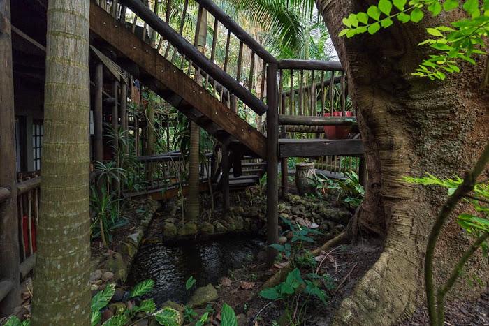 Vegetación del Umlilo Lodge, St. Lucía, Sudáfrica