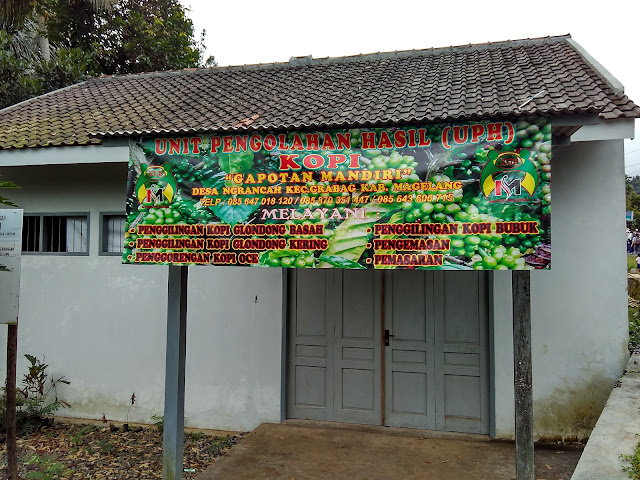 Jelajah Kebun Kopi Ngrancah Bersama Komunitas Kota Toea Magelang