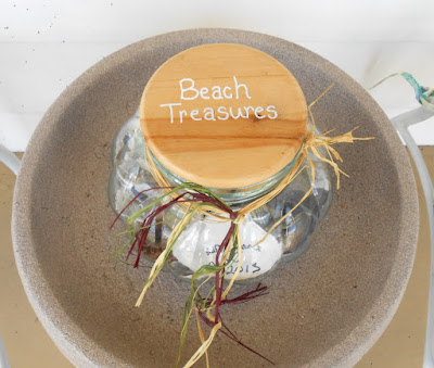 Ideas on How to Display Found & Collected Seashells from the Beach