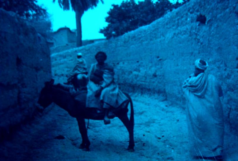 """الباحث علي هرماس يكتب عن زمن المجاعة والأوبئة بتارودانت """" الجزء الثاني """""""