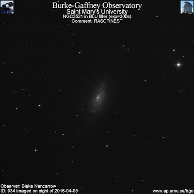 blue filter photograph of galaxy NGC 3521