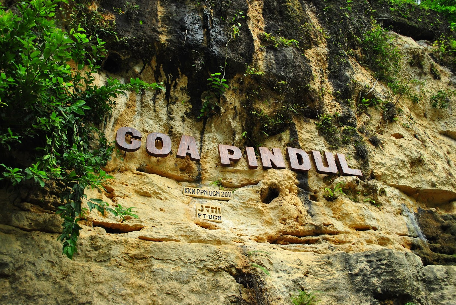 Wisata Yogyakarta Gua Pindul