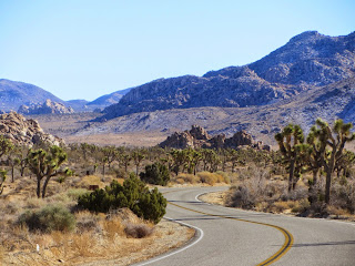 View east on southeast on Park Boulevard, Joshua Tree National Park