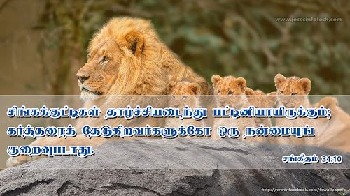 Tamil Bible wallpaper Psalm 34:10