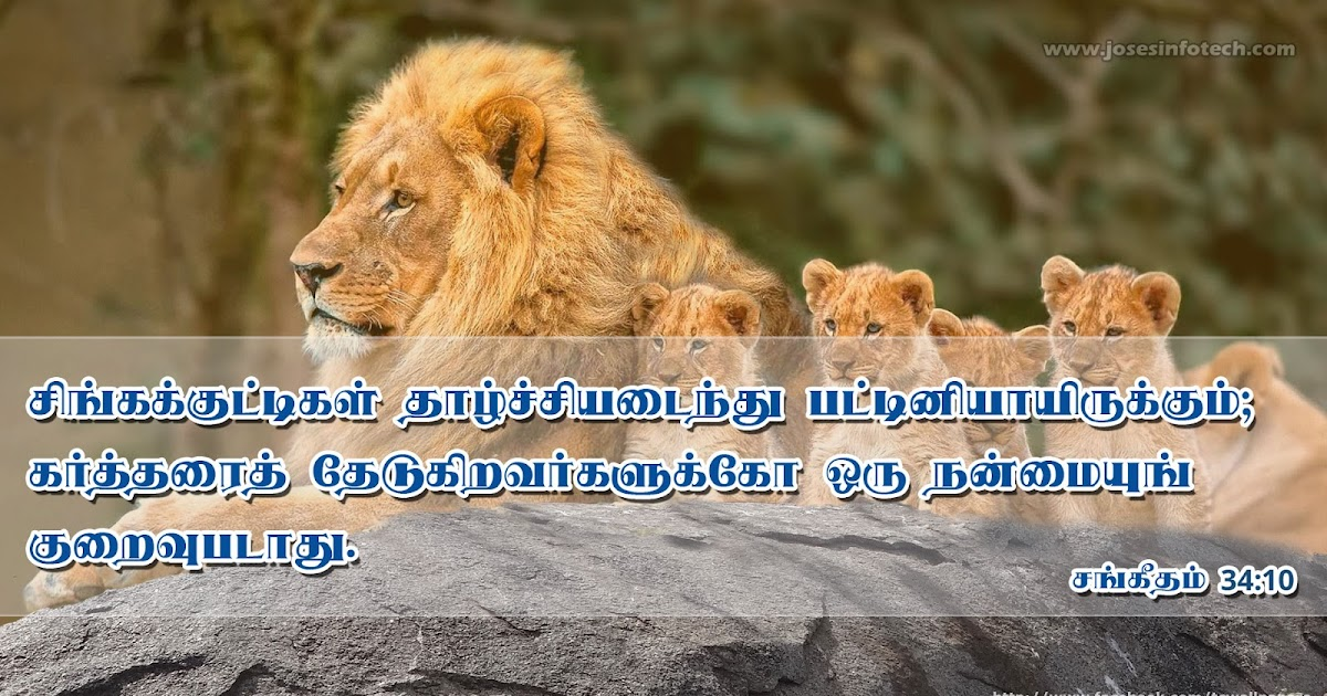 Genesis Chapter 20 | Tamil Audio Bible - YouTube