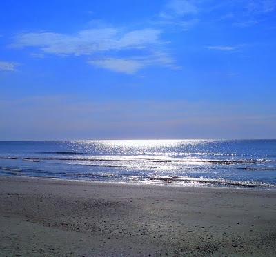 Hunting Island Beach in South Carolina with photo by DearMissMermaid.com