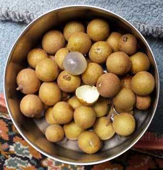 Picture of Longan Fruit