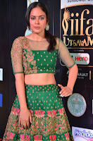 Nandita Swetha in a tight Green Choli Ghagra at IIFA Utsavam Awards March 2017 ~ 029.JPG