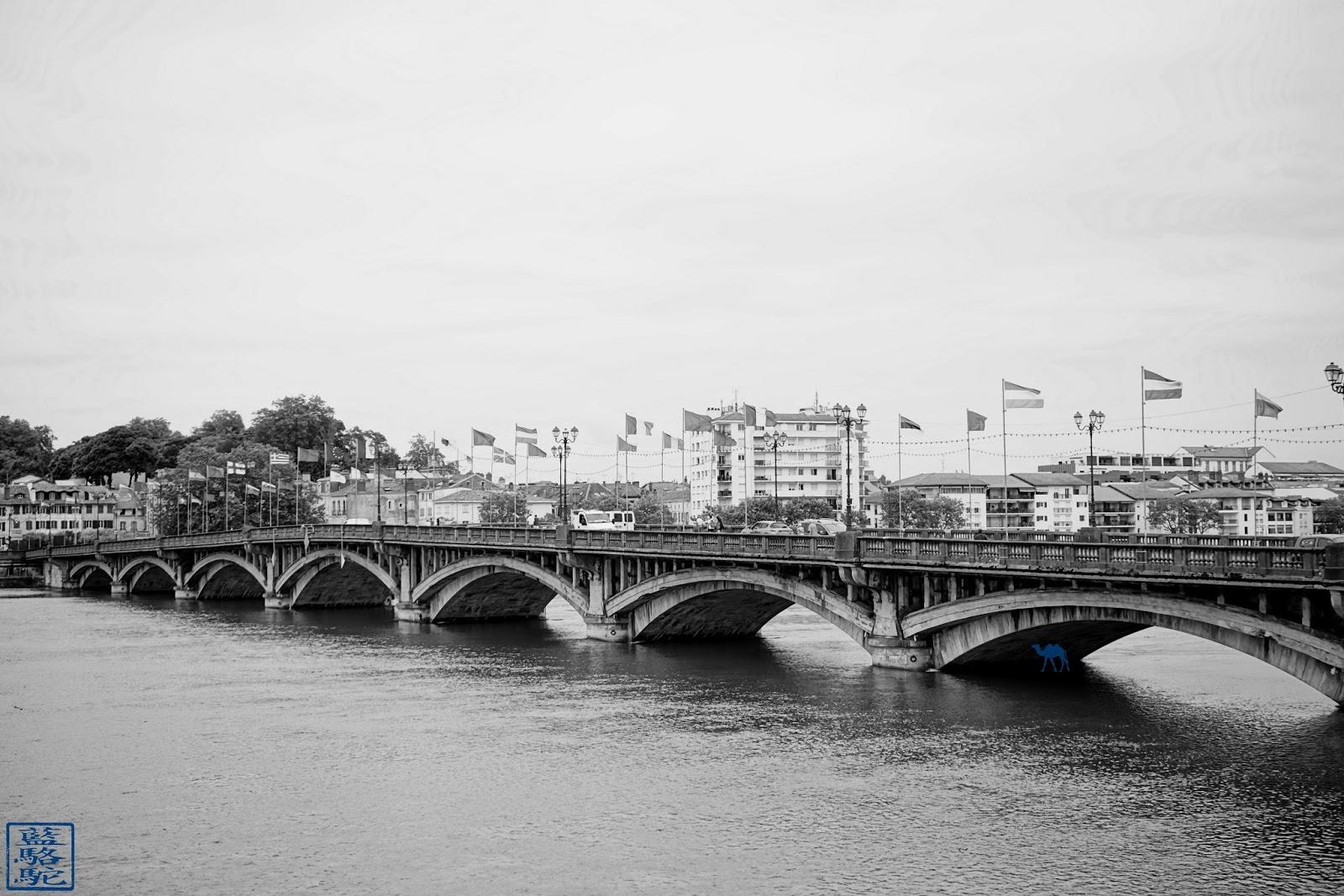 Le Chameau Bleu - Blog Voyage Bayonne France - Pont Saint Esprit  de  Bayonne - Pays Basque