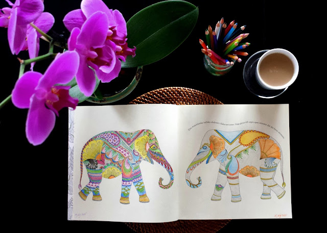 Adult coloring books: Millie Marotta's Animal Kingdom  |  Not just for kids on afeathery*nest  |  http://afeatherynest.com