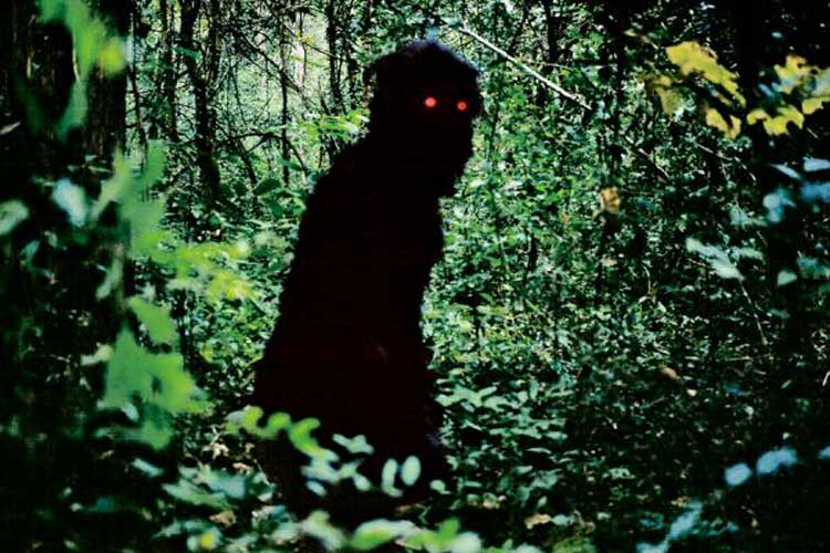 Uncle Boonmee Who Can Recall His Past Lives, directed by Apichatpong Weerasethakul