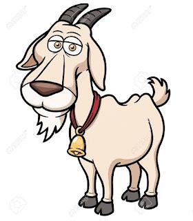kambing dan khasiat