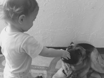un petit garçon carresse sa maman chien