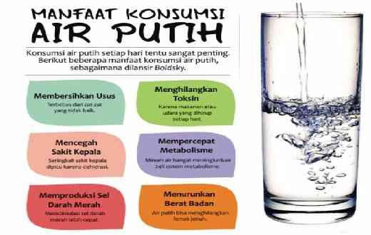 Manfaat air putih sangat diperlukan bagi tubuh kita. Demi keberlangsungan sistem metabolisme tubuh agar tetap berjalan normal.
