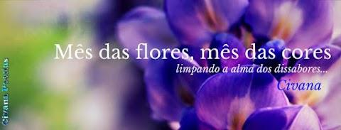 Mês das Flores, Mês das Cores...