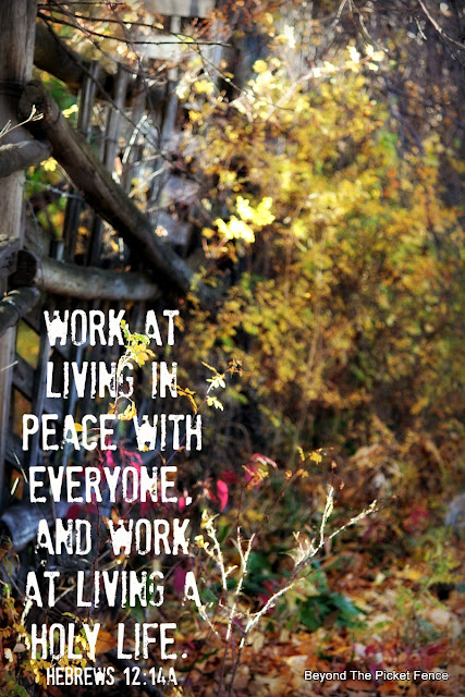 inspiring verse, bible verse, God's word, peace, fall photography, mending fences, http://www.beyondthepicket-fence.com/2016/10/sunday-verses_30.html
