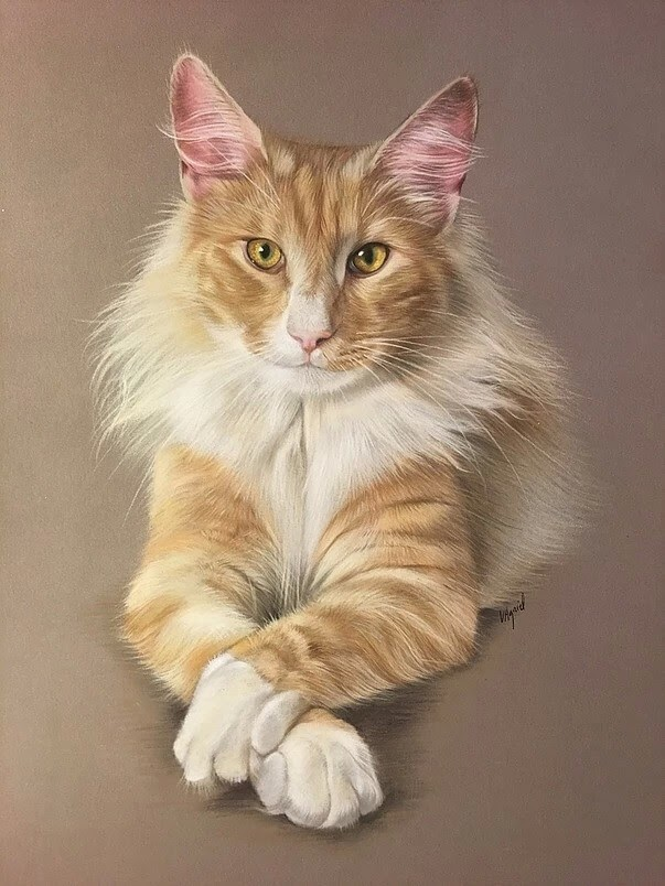 11-Norwegian-Virginie-Agniel-Pastel-Drawings-of-Cats-and-Dogs-www-designstack-co