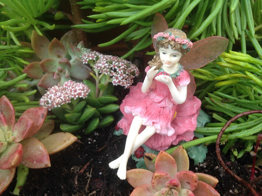 Fairy Garden Class - Budget Friendly Inspiration