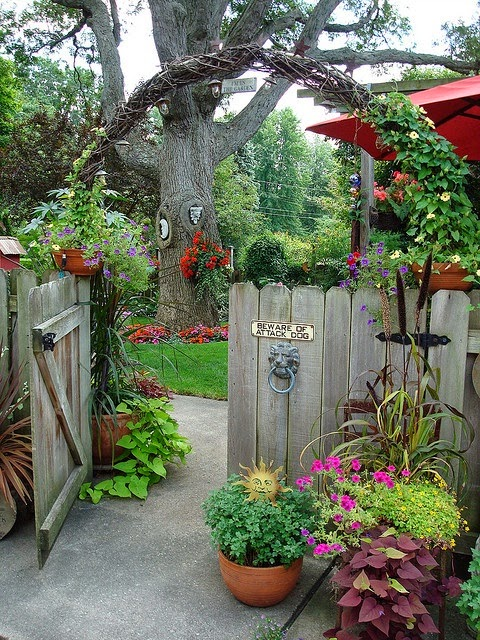 Beautiful Ideas For Amazing Garden With A Different Flowers And Colorful 2