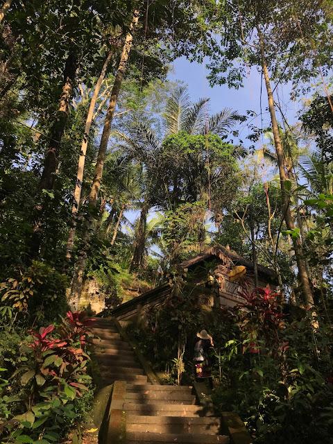 goa gajah tempio bali