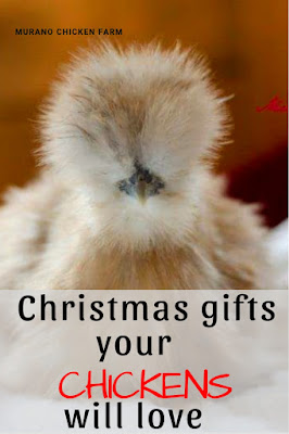 Christmas gifts for chickens. A list