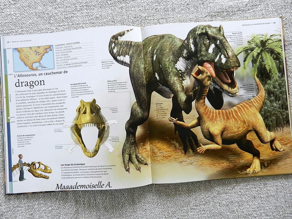Les Dinosaures A La Loupe Presentation AvisChut