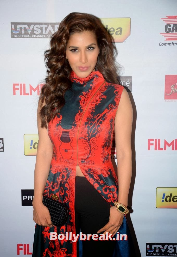 Sophie Choudry, 59th Idea Filmfare Pre Awards Party Photos, Sophie Choudry on Red carpet of Different Award Functions