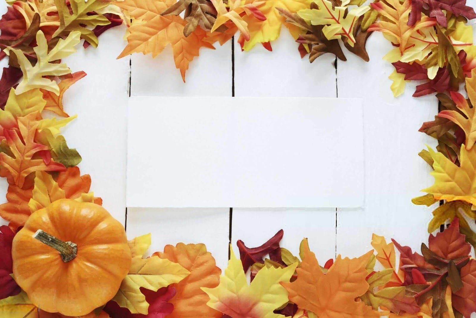 Thanksgiving Wallpaper Free, Free Thanksgiving Wallpaper