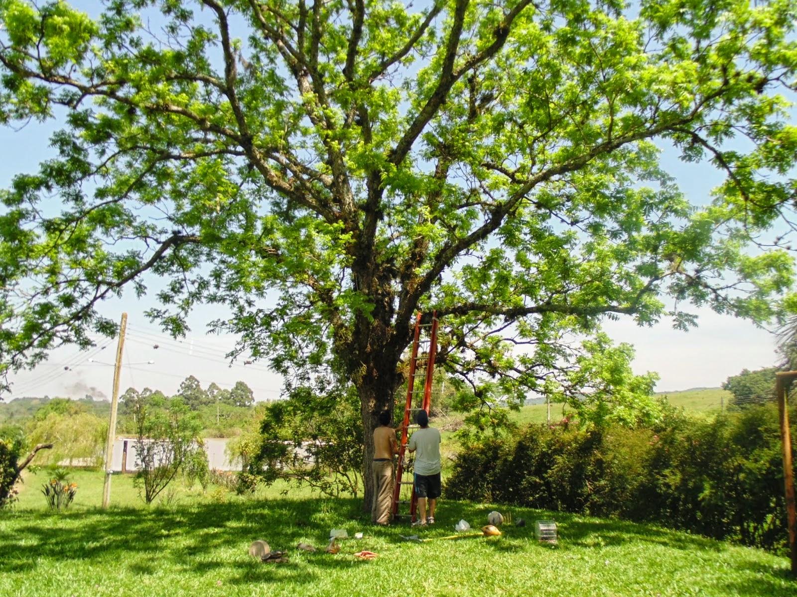 2º período - Lista de Selecionados Extravestibular - Cursos Campus São Leopoldo
