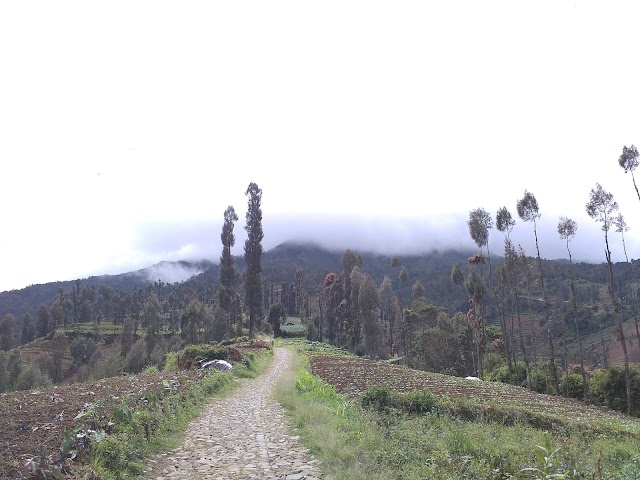 Pendakian Sumbing Via Garung