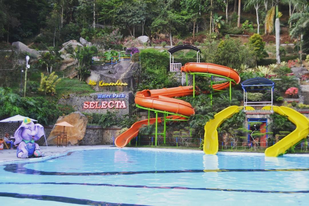 Taman Rekreasi Selecta Tempat Wisata Asyik Bersama Keluarga