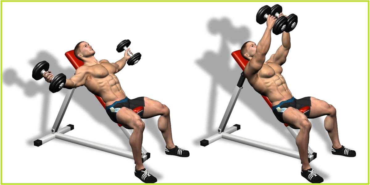 Top Chest Exercises Chart Pictures - Gym Workouts