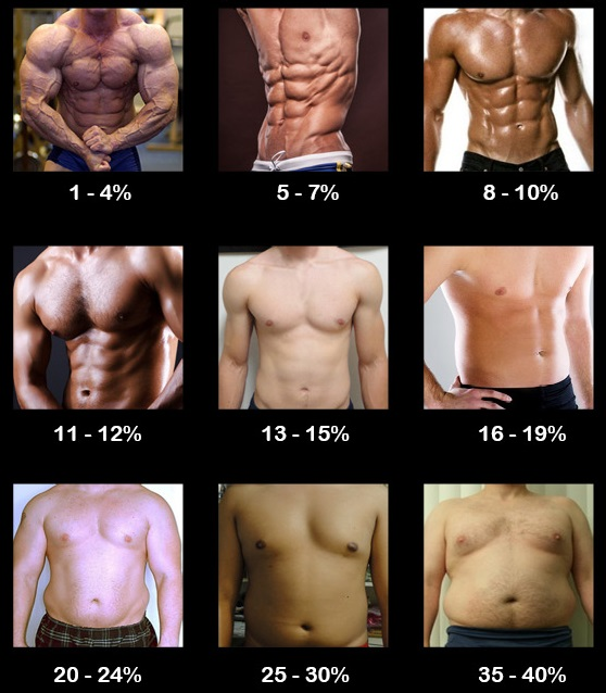 What is Your Body Fat Percentage (BF)?! - Runner Rocky