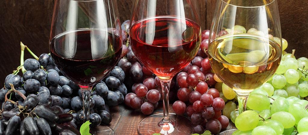 La produzione del vino: dall'Uva al bicchiere di Vino