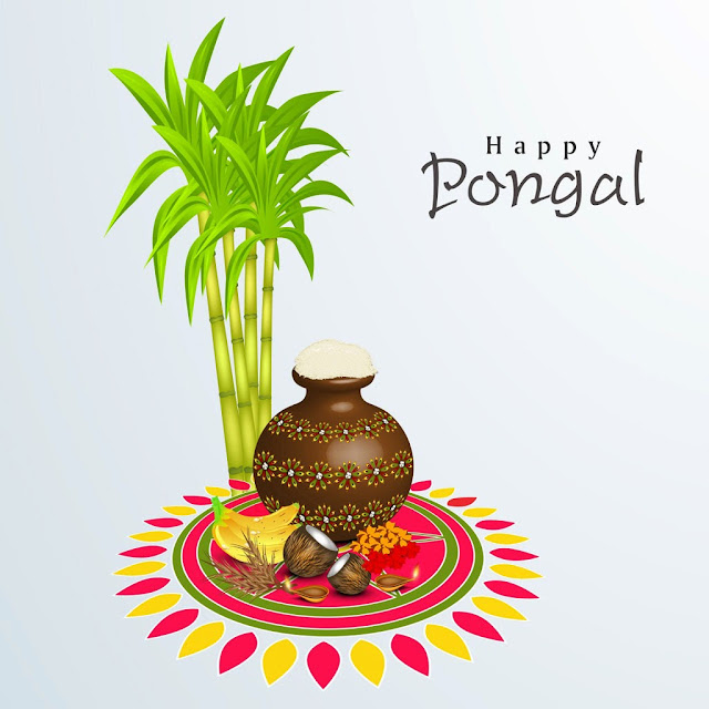 happy pongal,pongal wishes,pongal wishes tamil,happy pongal 2018,pongal festival,pongal,happy pongal whatsapp status,happy pongal 2019,pongal 2019,happy pongal whatsapp video,pongal wishes in tamil 2019,wishes,pongal whatsapp status,pongal whatsapp video,pongal whatsapp status tamil,happy pongal tamil wishes,pongal greetings,happy mattu pongal wishes 2019,greetings in tamil,happy pongal wishes