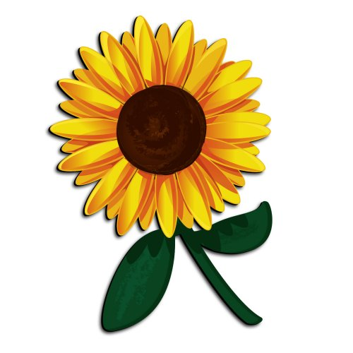 funny pictures: Sunflower amazing picture for kids