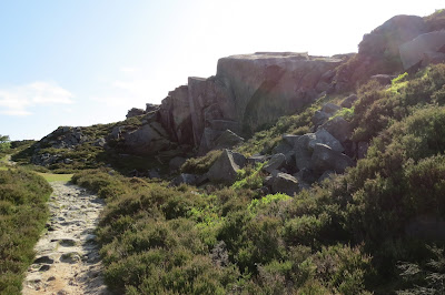 A narrow path through heather below a rock face.