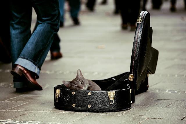 Il viaggio e la musica