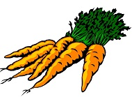 про морковь