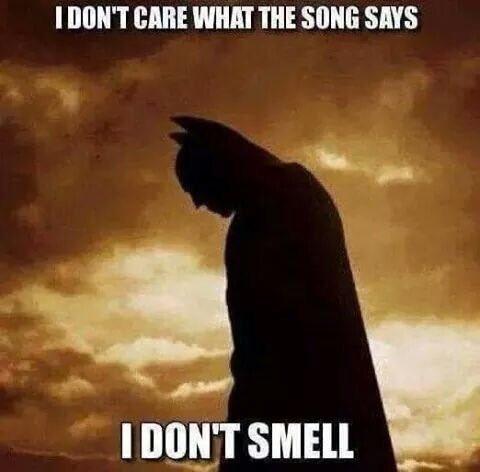 Funny Batman Doesn't Smell Joke Picture