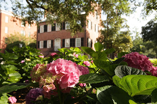 Savannah garden tours in Savannah quares year around | Photo Popcorn Octane