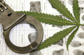 Uruguai: legalização da maconha não diminuiu o tráfico e a violência