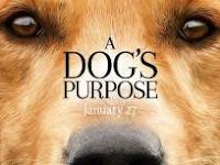Download Film A Dog's Purpose (2017) Subtitle Indonesia