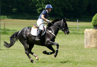 A rider galloping their black horse on a cross country course.