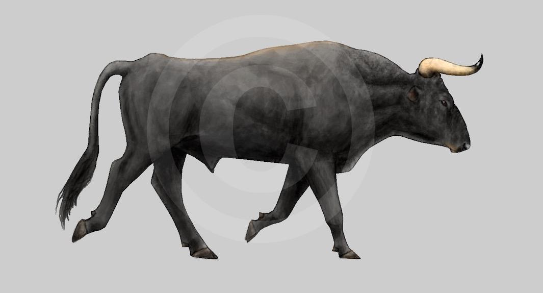 The Breeding-back Blog: New aurochs bull reconstruction