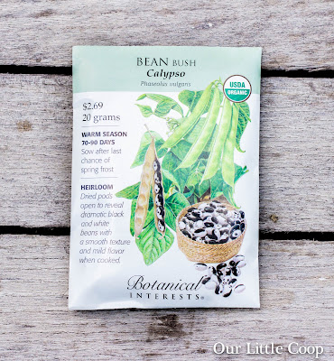 botanical interests, bean bush calypso, garden, seed, yin yang, orca bean