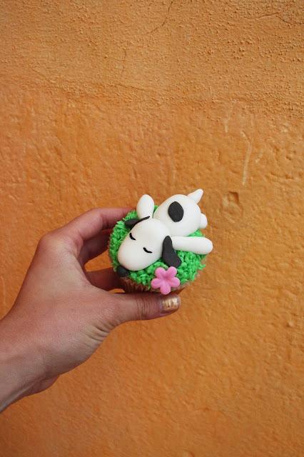Cupcakery Quetzaltenango Guatemala